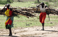 Masai_small_orizz_fascine