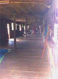 Centro_conservazione_Oranghi_Foto-Borneo-Gloria-(135)